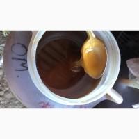 Продаю Алтайский мёд оптом