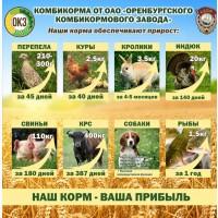 Комбикорма полнорационные Оптом для всех видов С/х животных, птиц и рыб
