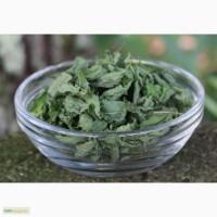 Продаю Сушеные Листья Мяты Перечной (Органика) - Кыргызстан
