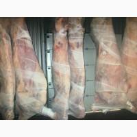 Продам полутуши говядину завернутую в марлю от производителя. С Укранины