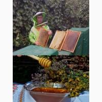 Предлагается горный и сотовый мед, собранный в экологически чистом районе ущелье Ала-Арча