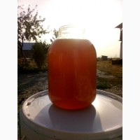 Продаю натуральный мёд