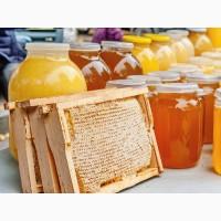 Продаю мед оптом Токтогульский разнотравье