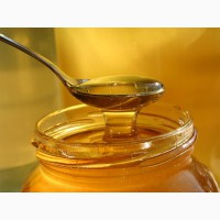 Продам мед оптом с третьей качки
