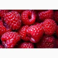 Малина, Клубника продаю ягоду