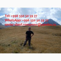 Guide, driver in Kyrgyzstan, travel, hiking, excursions