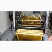Линия по распечатке медовых рамок